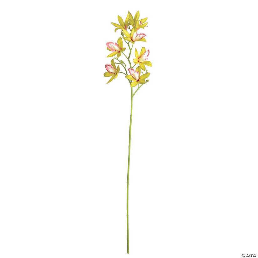 "Vickerman 32"" Artificial Green Orchid Stem Audio Thumbnail"