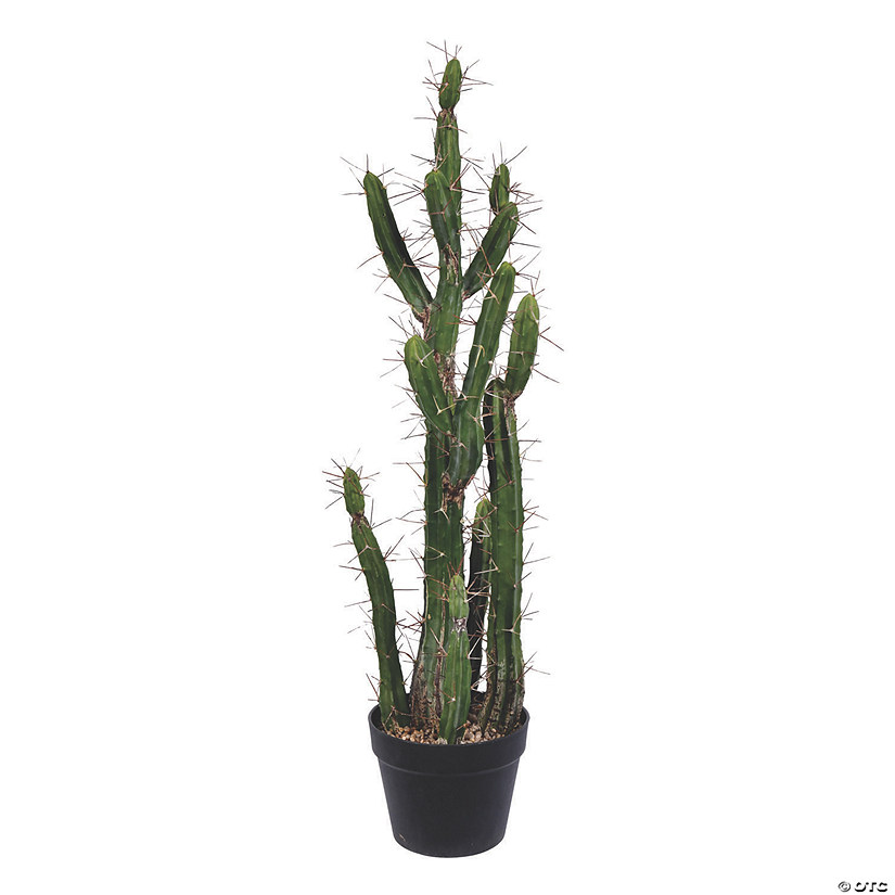 "Vickerman 34"" Green Cactus in Black Plastic Planters Pot Audio Thumbnail"