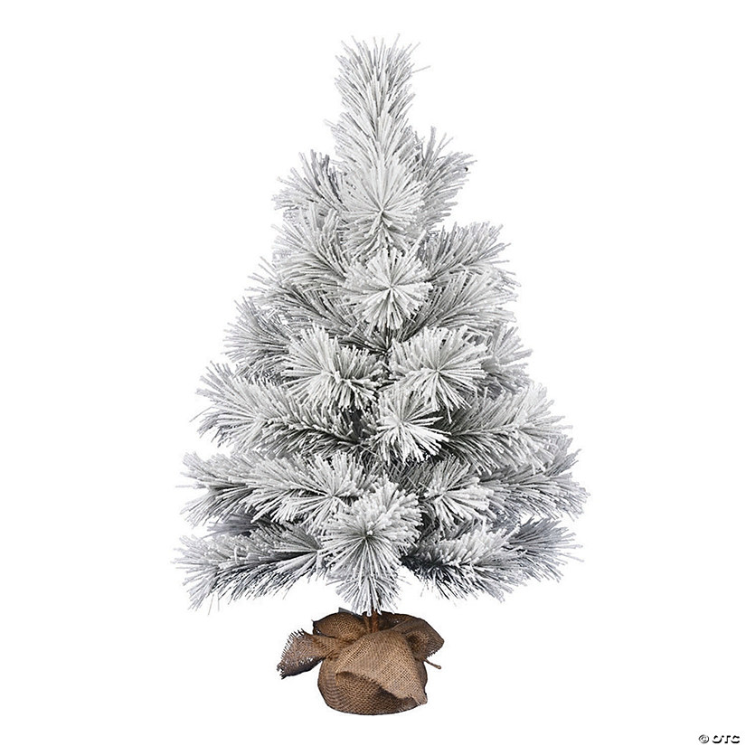 "Vickerman 36"" Frosted Beckett Pine Tree Image Thumbnail"