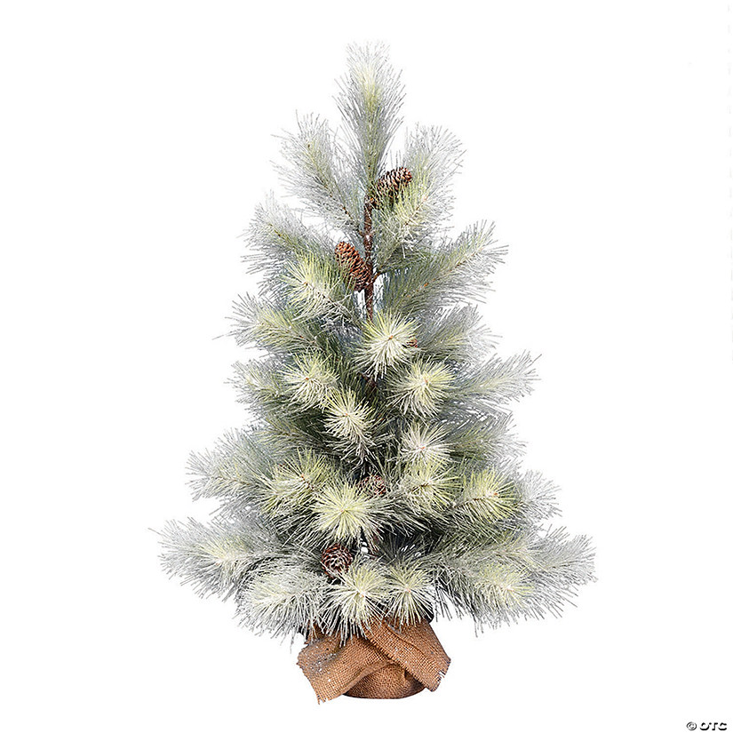 "Vickerman 36"" Norfolk Frosted Pine Tree Image Thumbnail"