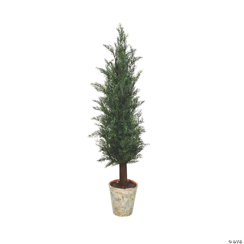 "Vickerman 36""Cedar Tree with Paper Pot Audio Thumbnail"