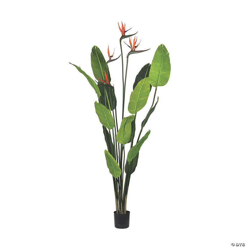 Vickerman 5' Potted Bird of Paradise Palm Tree Audio Thumbnail