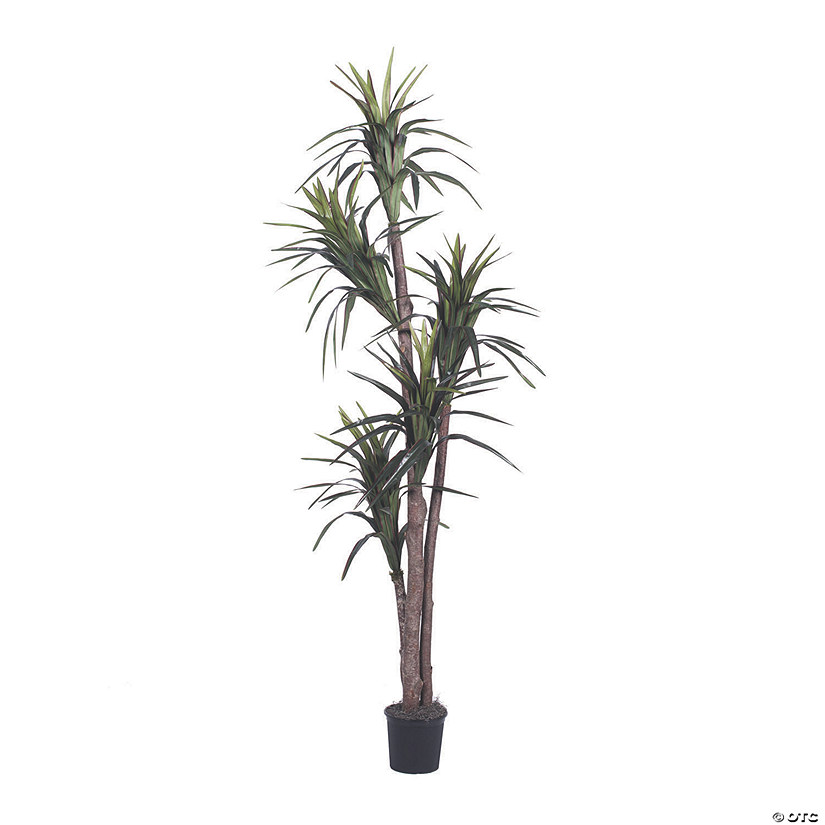 Vickerman 6.5' Artificial Marginata Executive Audio Thumbnail