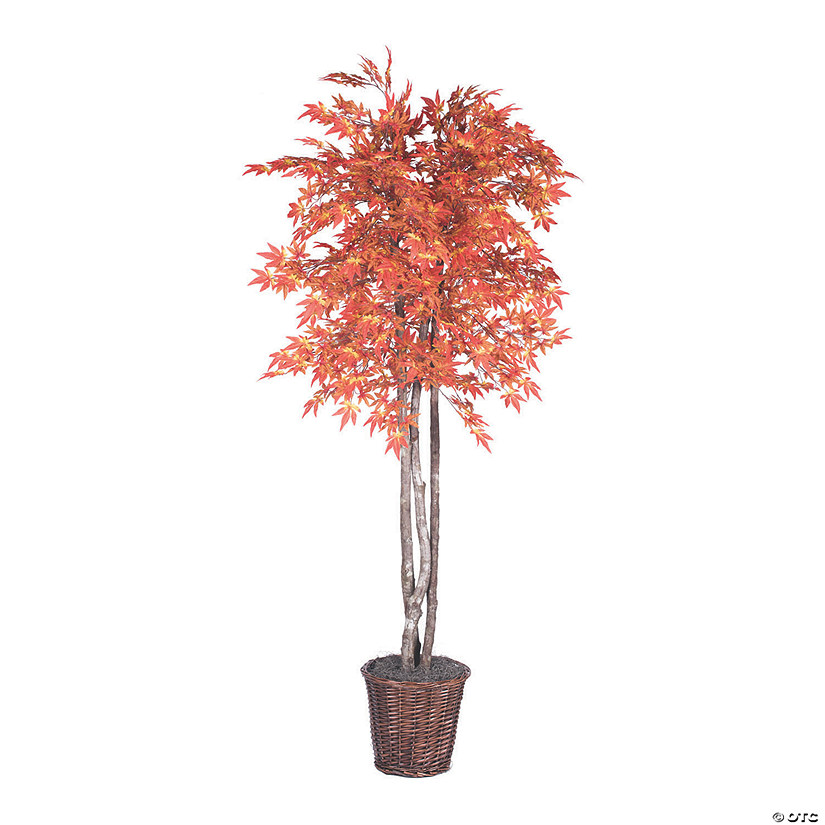 Vickerman 6' Artificial Orange Maple Tree Audio Thumbnail