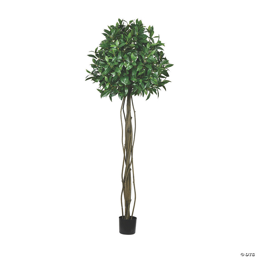 Vickerman 6' Potted Bay Leaf Tree Audio Thumbnail