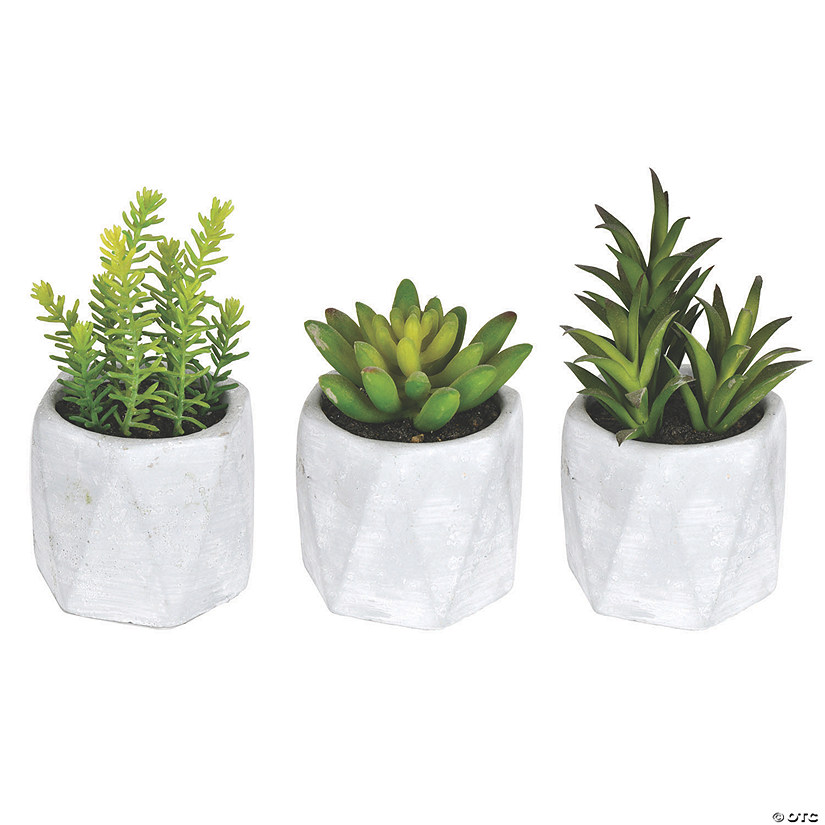 "Vickerman 6"" Potted Succulent Arrangements - Assorted, 3/pk Audio Thumbnail"