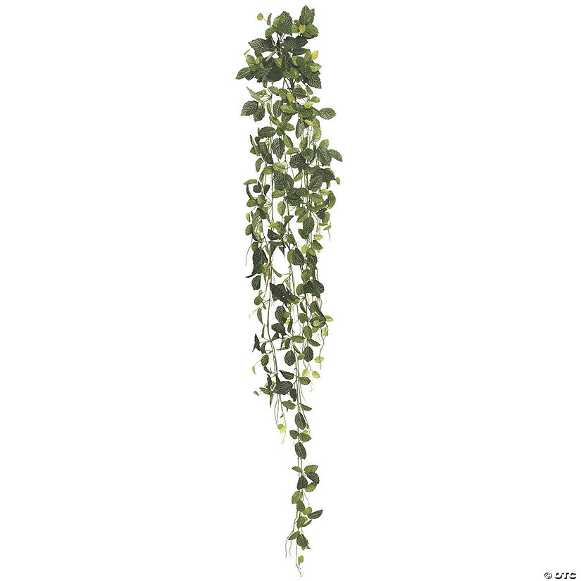 "Vickerman 65"" Artificial Green Fittonia Hanging Bush Audio Thumbnail"