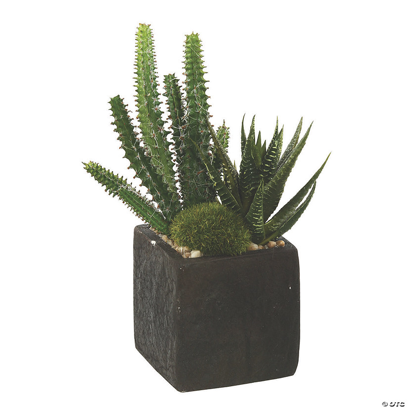 "Vickerman 8"" Artificial Green Succulent Arrangement Audio Thumbnail"