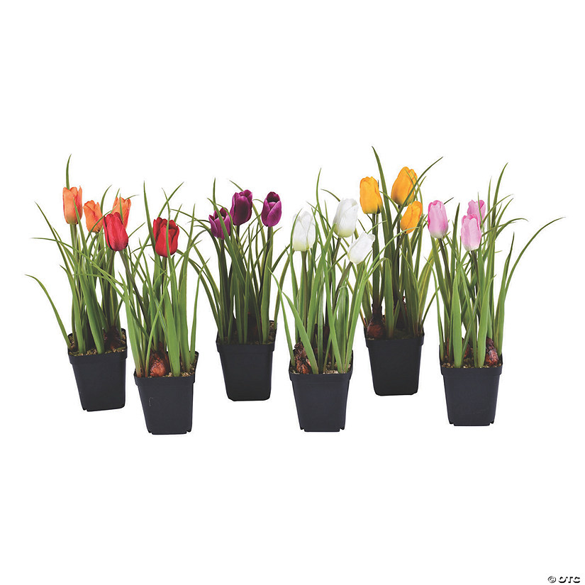 "Vickerman Assorted 10"" Potted Tulips in 3""x3"" Black Nursery Pot - 6 Pc. Audio Thumbnail"