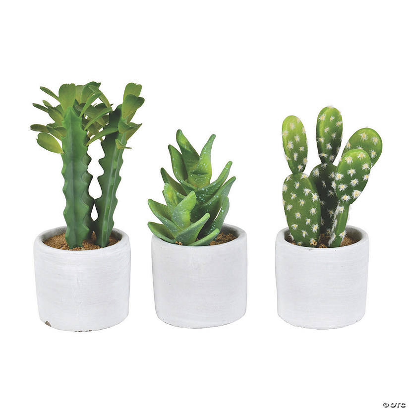 "Vickerman Set of 3 Assorted 7"" Potted Cactus Plants Audio Thumbnail"