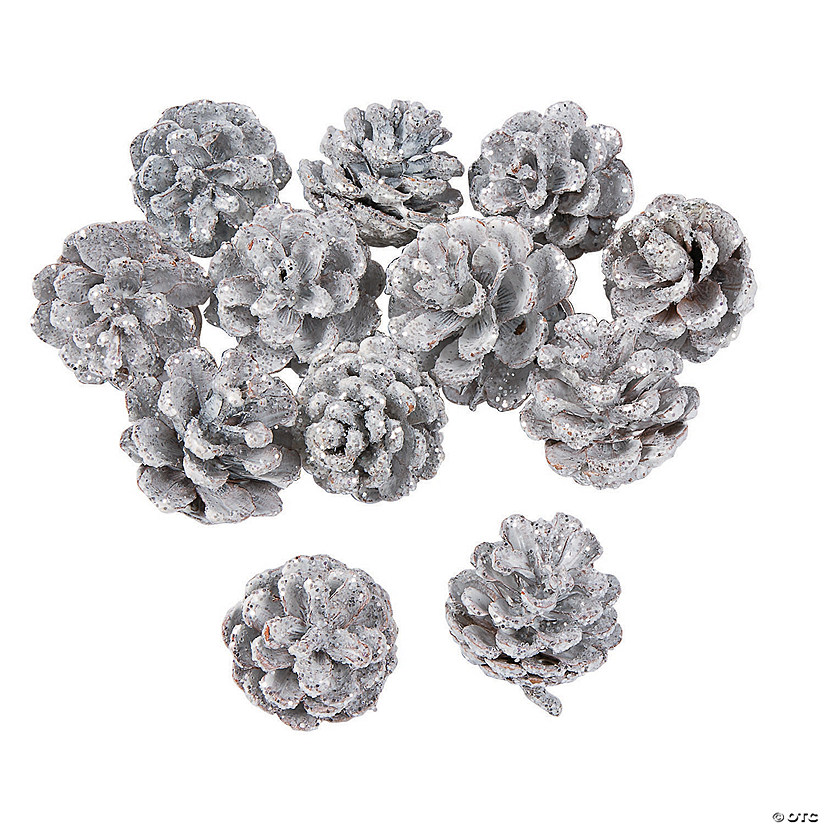 White Glitter Pinecone Assortment