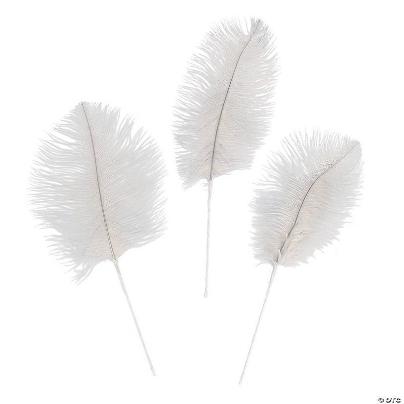 White Ostrich Feathers Audio Thumbnail
