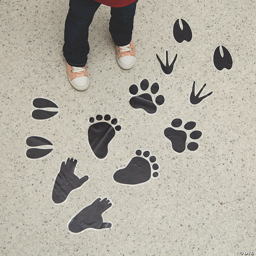 Wild Encounters VBS Animal Tracks Floor Clings