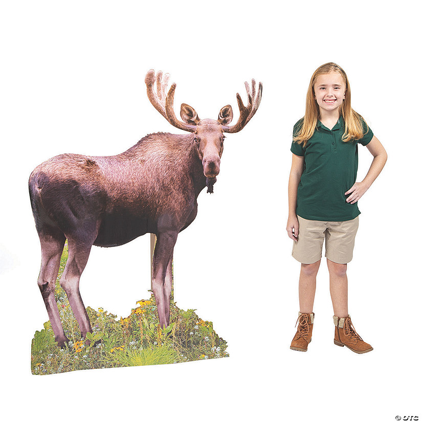 Wild Encounters VBS Moose Stand-Up Audio Thumbnail