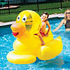 swimline-giant-inflatable-ducky-pool-float