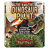 the-amazing-dinosaur-plant