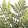 "Vickerman 17"" Artificial Green Rabbit Foot Fern Bush - 2/pk Image Thumbnail 2"