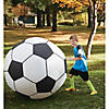 Giant Inflatable Soccer Ball Image Thumbnail 2
