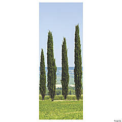 Ancient Greek Garden Cypress Scene Setter Background
