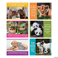 Baby Animals Faith Messages Poster Set