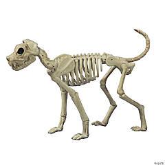 Buster Bonez Dog Skeleton