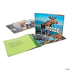 Capstone® North American Animals Books - Set of 6