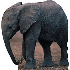 Cardboard Elephant Stand-Up