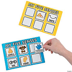 Cardboard Five Senses Sorting Game