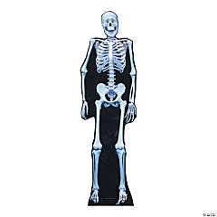 Cardboard Skeleton Stand-Up