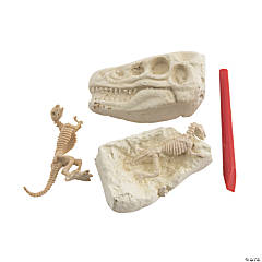 Dig & Discover Excavation Dinosaur Heads
