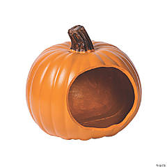 DIY Pumpkin Terrarium
