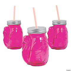 Flamingo Jar Glasses with Lids & Straws