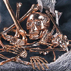 Gold Bag of Bones Halloween Decoration