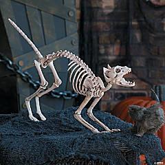 Halloween Skeleton Cat Halloween Décor