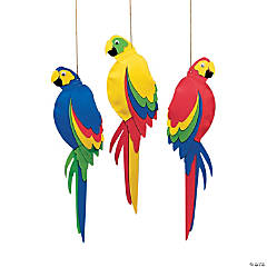 Jumbo Parrots