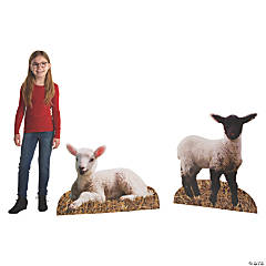 Lamb Stand-Ups