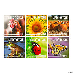 Life Cycle Readers