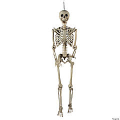 Life Size Posable Skeleton Halloween Decoration