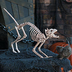 Plastic Halloween Skeleton Cat