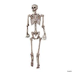 Posable Skeleton - 5 ft.