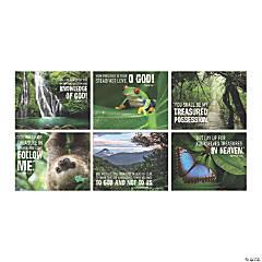 Rainforest VBS Poster Set