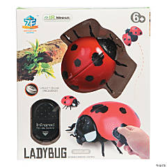 Remote Control Ladybug