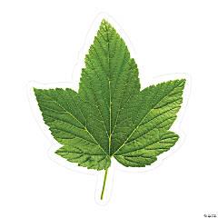 Schoolgirl Style™ Green Leaf Bulletin Board Cutouts