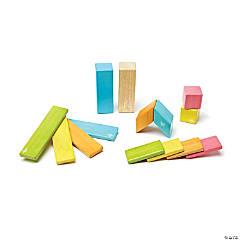 Tegu Magnetic Wooden Blocks, 14-Piece Set, Tints
