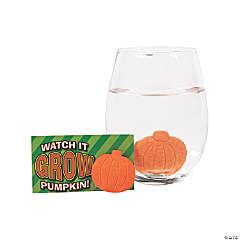 Watch It Grow Pumpkins