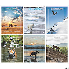 Wild Encounters VBS Poster Set