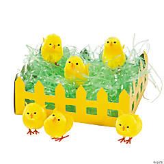 Yellow Baby Chicks