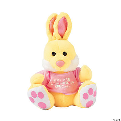 Small Plush Bunny With Personalized T Shirt Discontinued