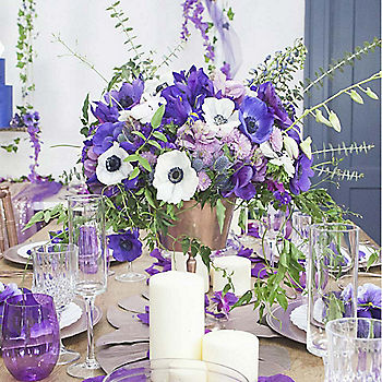 Pantone Ultra Violet Wedding